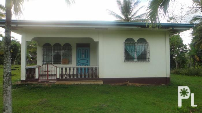 2 8m house lot for sale in mariveles dauis panglao for 2 houses on one lot for sale