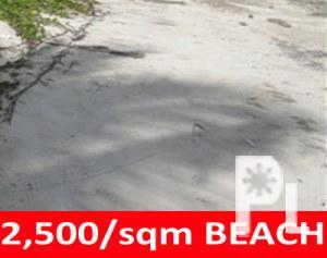BEACH LOT IN PANGLAO BOHOL FOR SALE BOHOL BEACHFRONT