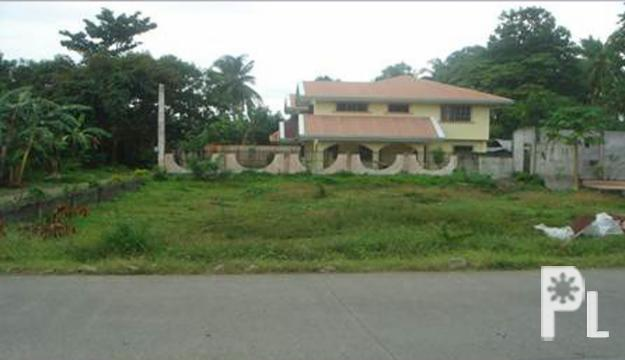 Foreclosed Residential Lot for sale in Cabadbaran City,