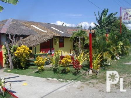 House And Lot W Comm Building And Swimming Pool 2 5m Only For Sale In Ormoc City Eastern