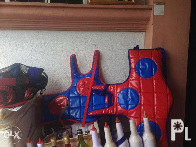 Karate Sparring Gear for Sale in Cagayan De Oro City