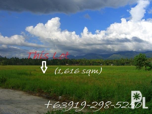 Lot For Sale in Cabadbaran City, Agusan del Norte,