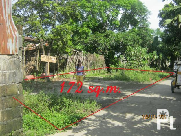 Cabiao Nueva Ecija House and Lot for Sale