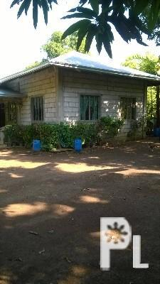 Rush house and lot for sale before 2m now 1 4 na lang for 2 houses on one lot for sale