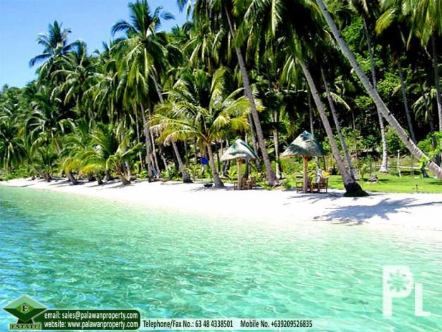 Rizal (Palawan) Philippines  City pictures : San Vicente, Palawan Albaguen Island beach portion with resort 4 ...