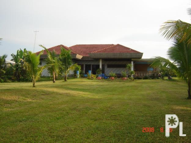 Semi Furnished House with big lot for sale in Mercedes  : semifurnishedhousewithbiglotforsaleinmercedescamarinesnortemercedes99381 from mercedes-rv.philippineslisted.com size 625 x 469 jpeg 131kB