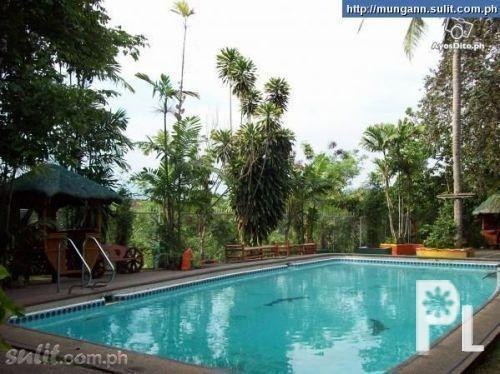 swimming pool for rent party venue in fairview quezon city for sale in quezon city national ForHouse With Swimming Pool For Rent In Quezon City