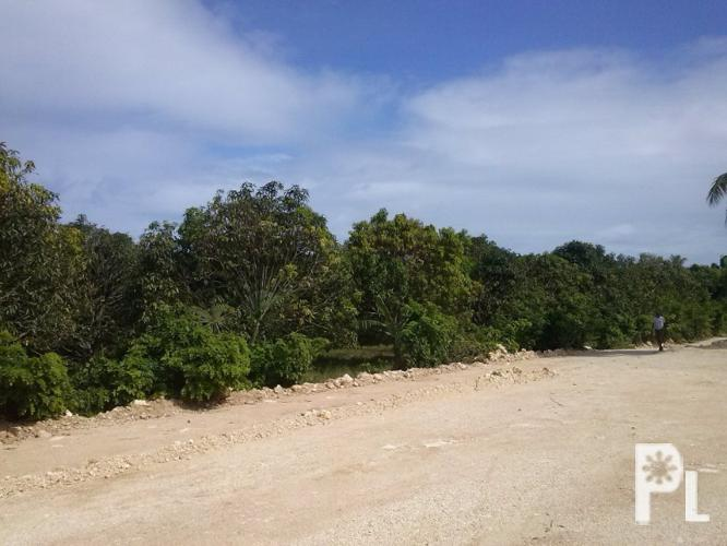 Vacant Lot for Sale in Jubay, Lilo-an Cebu ? Liloan
