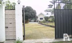 Fully concrete fenced walls, two steel gates, separate maid and stock room, existing water line, mango, calamansi, fruit bearing trees, fully cemented driveway, native rest kubo, 1 kilometer away from the main city, two blocks away from high way. few tens