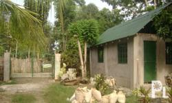 Square Meters: 100 Furnished: Hindi HOUSE AND LOT FOR SALE NEWLY BUILT UNFINISHED..FOR SALE FOR ONLY PHP 750,000.00 facing East...along the road can be used as commercial purposes.. with lot area of 100sqm located in Tagburos Site, Puerto Princessa City,