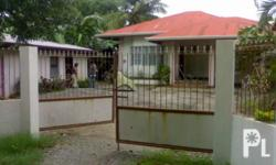 Mga Kwarto: 2 Mga Banyo: 1 Square Meters: 443 House and lot for sale @ Laoag city LOCATION: Laoag City 800meters from Northwestern University of Laoag. LAND AREA: 443square meters Distance from the Highway: About 400Meters Driving Time: Driving time from