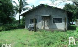 HOUSE & LOT W/ FARM LOT Location: No.7 Samson Road, Barangay Nagsaing Riverside ,Calasiao,Pangasinan price: php. 3,000,000.00 but negotiable Lot area= 3000sqm., more or less Floor area= 180sqm. Further description: -With 3 bedrooms, 1 toilet & bath, 2