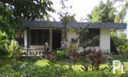 New house & titled lot near sogod beach, 580 sq.mtr. lot area, all house accessories inside are included for selling.