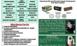 HEALTH IS WEALTH! HELP STOP! Cancer, Diabetes, Stroke, Heart Attack, Hepatitis, Arthritis, Ulcer, Kidney Stone, Acne, Dengue, Anemia, Asthma, Hypertension?and 87 other diseases... Santé Pure Barley New Zealand is a complete health food packed with