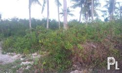 it is a subdivided parcel of land, flat terrain, ready
