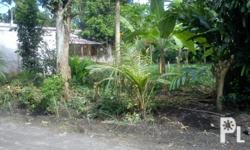 276 sqm Residential Lot, Near Gaisano Mall-Marbel and