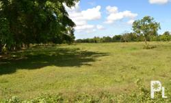 - Total land area is 2.42 hectares (24,200 sq. meters)