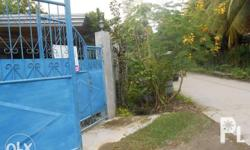 HOUSE AND LOT FOR SALE Location: near Camella