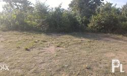 3.2 Hectares Commercial Industrial For Lease Tayud,