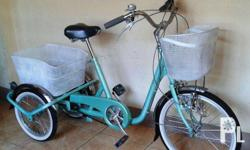 JAPAN SURPLUS 3-WHEELS TESENFE BIKE STORE Address: