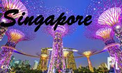 Singapore all in tour package Travel august - sept