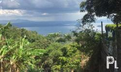 Virgin Land full Taal Lake/Volcano view can be use for