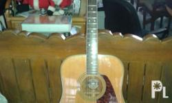 Morris acoustic guitar Model: MD 506 Made to specs to