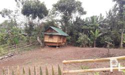 Invest now! Residential farm lot for sale in Amadeo