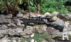 -Armscor Co2 rifle -rifled barrel, very accurate..
