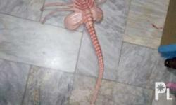 I'm selling my Furyu Alien Facehugger 35 inch long