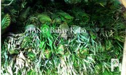 We provideAnahaw leavesfor sale in addition to our
