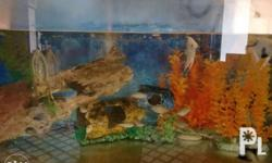 Quiting Sale 2pc 35 gallon For sale lahatan na 3.5K