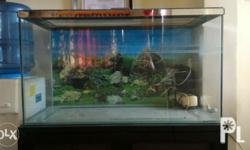 50 gallon aquarium 2ndhand with pump and air filter