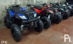 1 YEAR SERVICE WARRANTY! THOR 110cc = Php40,000 THOR