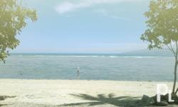 Square Meters: 115 Beach Lot for Rent/ Lease A newly