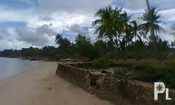 Beach Lot For Sale in Daan Bantayan Barangay Bitoon,