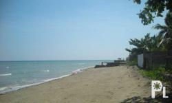 Beach Lot in Carmen Cebu ? Cebu City