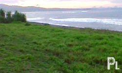 Beachfront Lot for Sale in Northern Samar, Philippines