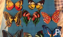 Butterfly Magnets 3.5x4.5inches. Bigger than the last