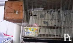 For sale cage Rush Single cage Pang small pet Good