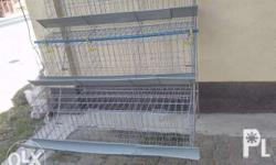 GI Cages for RTL Pullets, Chicken Layers or Birds Comes