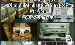 Welcome to Canine Manila We value integrity &