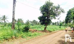 Dagatan Farm Lot For Sale Dagatan Amadeo Cavite near