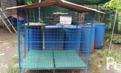 Dog cage for large breed . Newly painted with primer