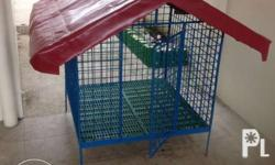 New Quality Dog cage made from 10 mm bar and 40 X 40