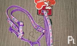 Leash with harness S - P100.00 M - P150.00 L - P200.00