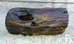 Driftwood Saltwater Cured -300 pesos only -9 inches