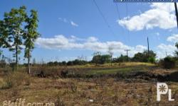 Farm lot for sale ,1000 sq. meters in  San Rafael san