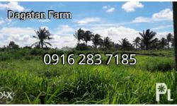 Dagatan Farm Lot For Sale! Subdivided Farm Lot located