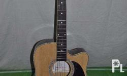 Fernando Acoustic Guitar Model: AW-41c Gold Plated